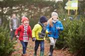 Семья, выбирая Рождественская елка вместе — Стоковое фото