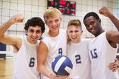 Members Of Male Volleyball Team — Stock Photo