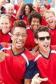 Spectators In Team Colors Watching Sports Event — Stock Photo