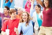 Spectators Celebrating At Outdoor Sports Event — Stock Photo