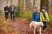 Family Walking Dog Through Winter forest — Stock Photo