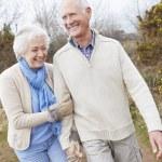 Senior Couple Walking on Countryside — Stock Photo #59873891