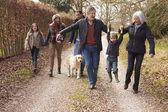 Multi Generation Family On Walk — Stock Photo