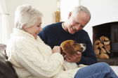 Senior Couple Relaxing  With Dog — Stock Photo