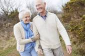 Senior Couple Walking on Countryside — Stock Photo