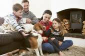 Family  Stroking Dog — Stockfoto