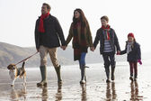 Family Walking on Beach With Dog — Stock Photo