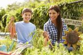 Mother And Son Working On Allotment — Stock Photo