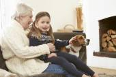 Grandmother And Granddaughter  With Dog — Stock Photo