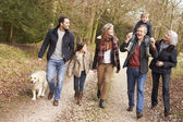 Multi Generation Family On Walk — Stock Photo