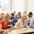 Tutor teaching class — Stock Photo #61027725