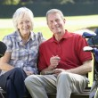 Couple on golf course — Stock Photo #61027799