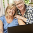 Senior Couple Working — Stock Photo #61027999