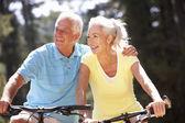 夫妇在自行车 — 图库照片