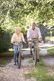 пожилые супружеские пары велоспорт — Стоковое фото