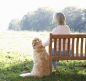 Senior woman sitting  with dog — Stock Photo
