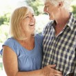 Senior couple — Stock Photo #61030267