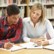 College tutor with student — Stock Photo #61031513