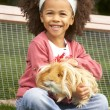 Young girl  holding guinea pig — Stock Photo #61031791