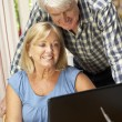 Senior Couple Working — Stock Photo #61032333
