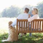 Senior couple  with dog — Stock Photo #61032387