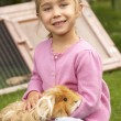 Young girl holding guinea pig — Stock Photo #61033461