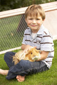 Boy  holding guinea pig — Stock Photo