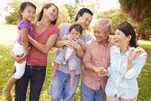 Multi Generation Family Walking — Stock Photo