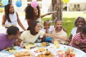 Multi pokolenie rodziny cieszyć posiłek — Zdjęcie stockowe