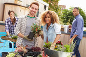 Friends Planting Rooftop Garden — Stock Photo