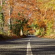 Country Road Through Autumn Forest — Stock Photo #68251715