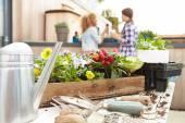 Women Planting Rooftop Garden — Стоковое фото