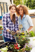 Female Friends Planting on Rooftop — Stockfoto