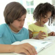 Two African American Children Doing Homework — Stock Video #71413041