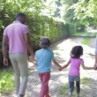 African American Family Walking — Stock Video #71413043