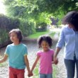 African American Family Walking — Stock Video #71413339