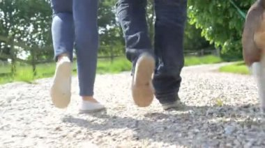 Close Up Of Couple's Feet Taking Dog For Walk — Stockvideo