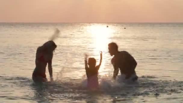 Silhouette Of Family Having Fun — Vídeo de stock