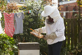 Man Collecting Honey From Hive — Stock Photo