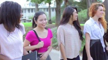 Vrouwelijke studenten lopen op de Campus — Stockvideo