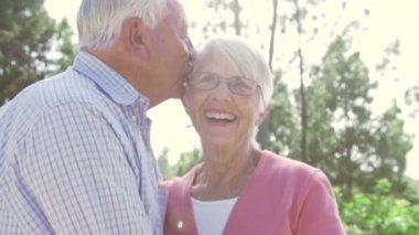Senior Couple Embracing Outdoors — Stock Video