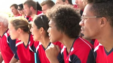 Spectators In Team Colors Watching Sports Event — Stock Video