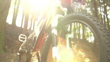 Man On Mountain Bike In Woodland — Stock Video