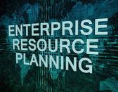 Enterprise Resource Planning — Stock Photo