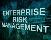 Enterprise Risk Management — Foto Stock