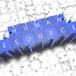 Human Resources — Stock Photo #60716239