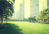 Park in  lujiazui financial centre, Shanghai, China — Foto de Stock