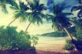 Puesta de sol en la playa takamaka, mahe island, seychelles — Foto de Stock