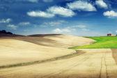 Tuscany hills, Italy — Stock Photo