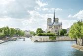 Seine and Notre Dame de Paris, Paris, France — Stock Photo